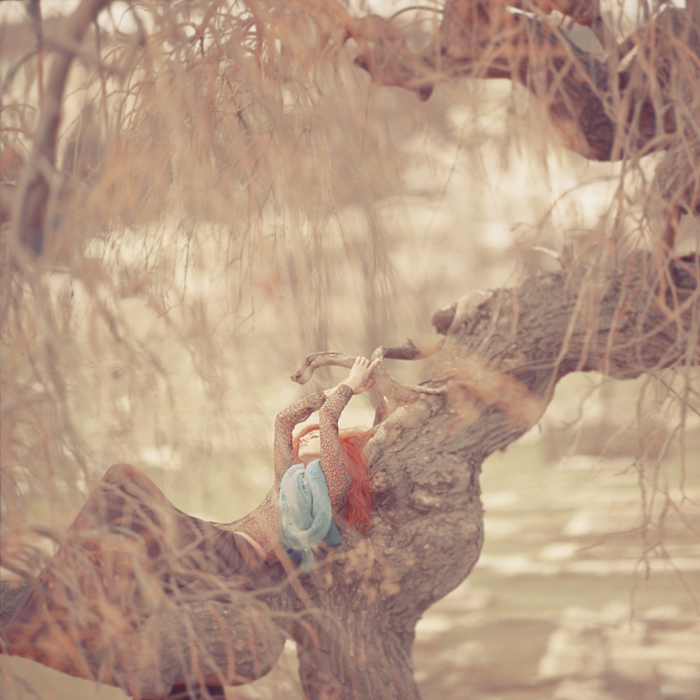foxline_by_oprisco-d387fuz